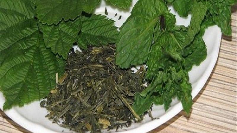 Как правильно заготовить листья малины на зиму для чая в домашних условиях