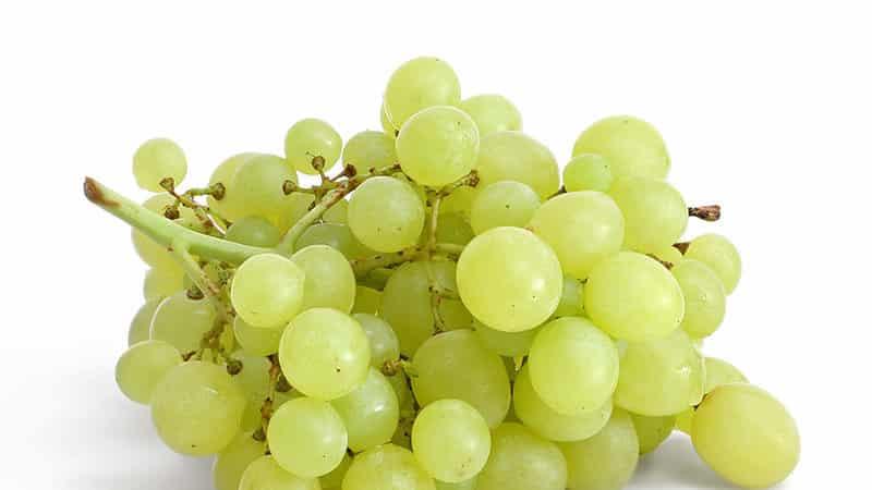 Проверенные способы, как сохранить виноград на зиму в домашних условиях
