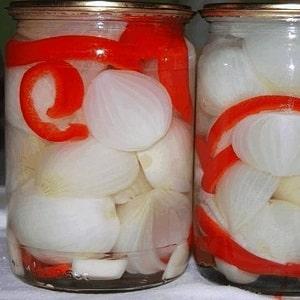 Лучшие рецепты маринованного лука на зиму в домашних условиях