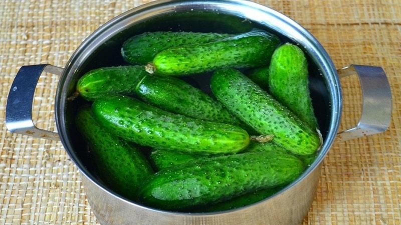 Вкусные хрустящие малосольные огурцы на зиму: рецепты без стерилизации на 1 литр