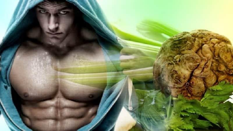 Сельдерей полезные свойства и противопоказания для мужчин