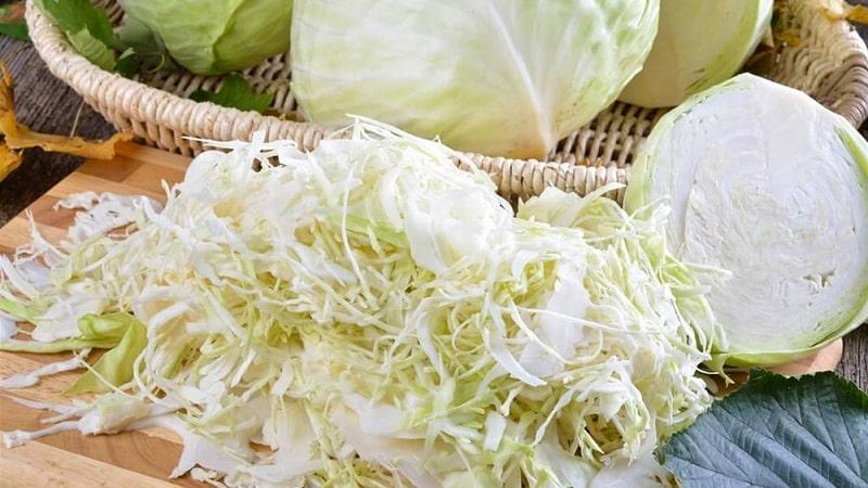 Простые и вкусные рецепты соления капусты в рассоле с солью и сахаром