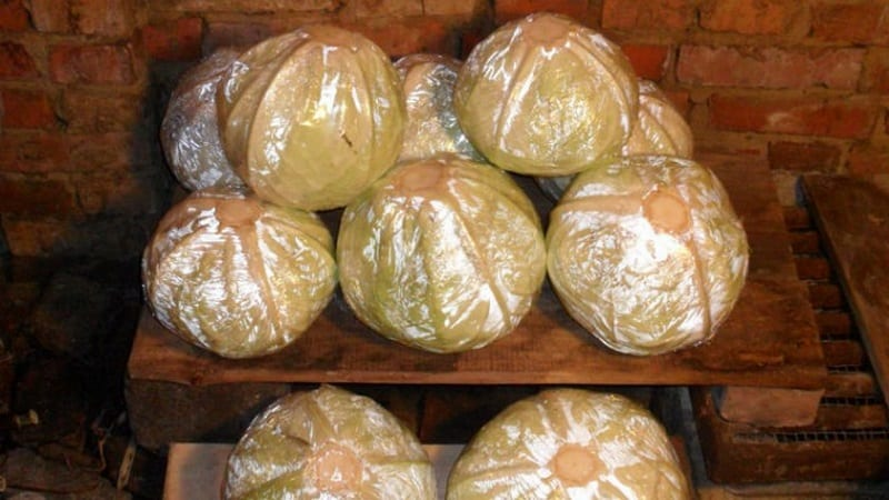 Проверенные способы, как сохранить капусту на зиму в свежем виде