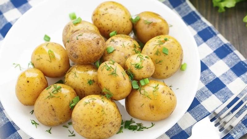 Можно ли проводить разгрузочные дни на картофеле