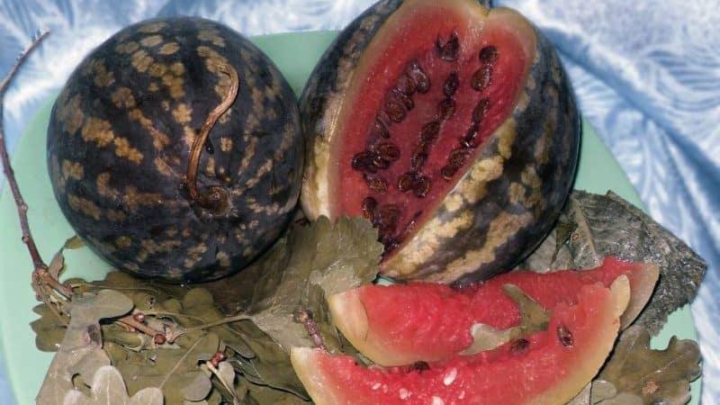 Классический рецепт моченых в бочке арбузов в домашних условиях и различные варианты добавок
