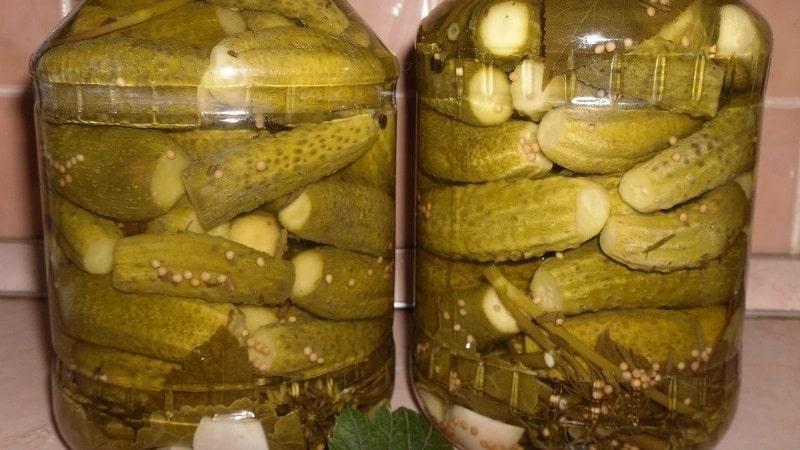 Хрустящие огурцы в банках на зиму: рецепты засолки с уксусом