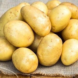 Среднеранний сорт картофеля, устойчивый к заболеваниям — Брянский деликатес