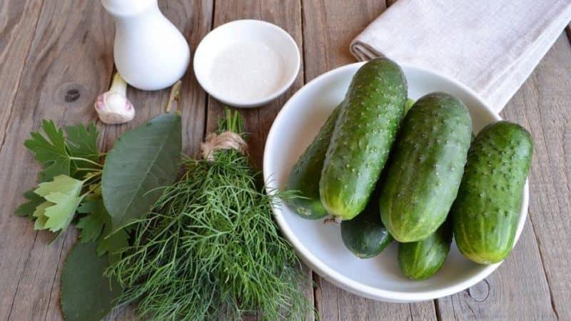 Простые и вкусные способы сухой засолки огурцов в банке, пакете и бочке