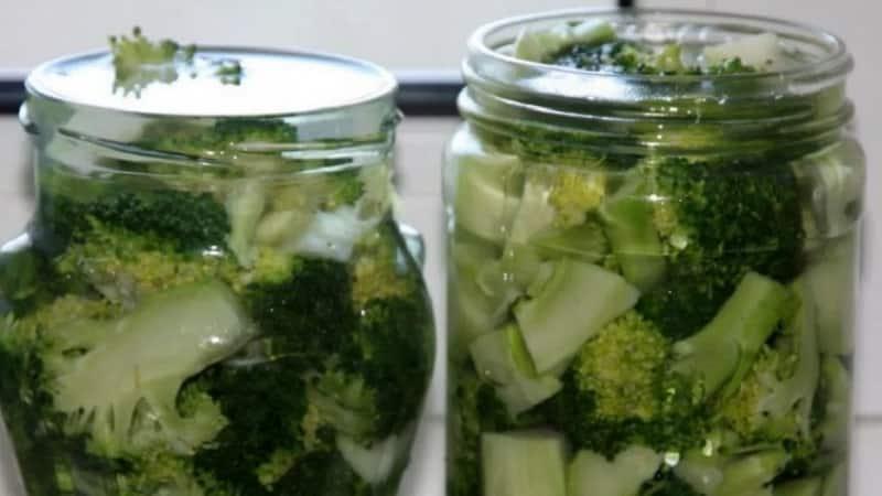 Вкуснейшие рецепты приготовления маринованной брокколи на зиму от опытных хозяек
