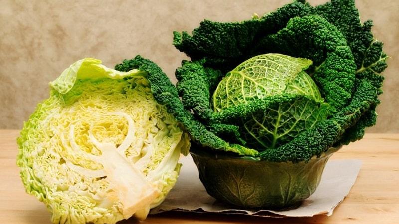 Заготовки своими руками: можно ли солить савойскую капусту на зиму и как сделать это правильно