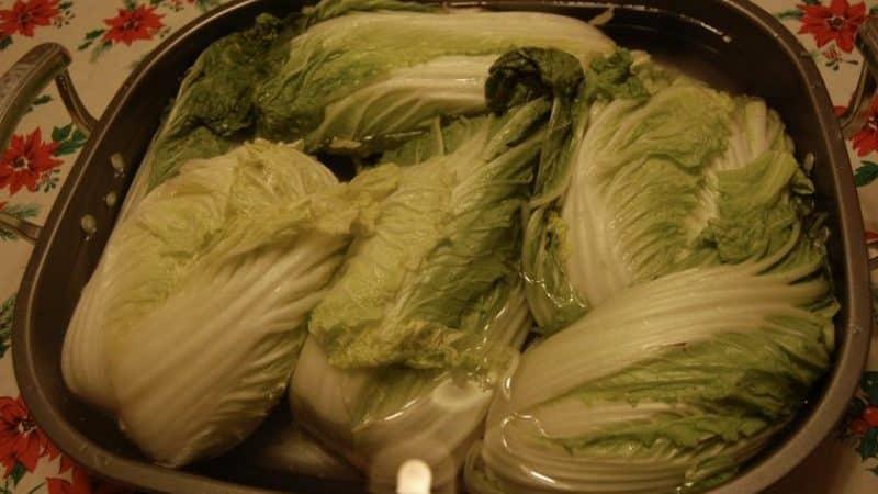 Заготовка впрок: можно ли замораживать пекинскую капусту на зиму и как это правильно сделать