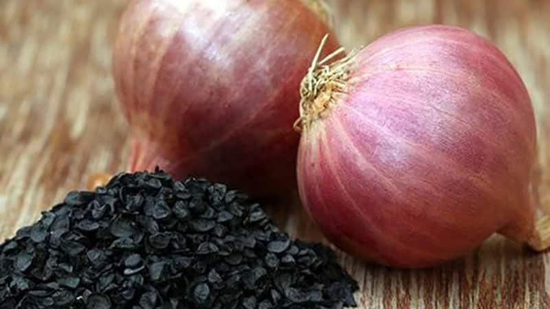 Рекомендации огородников со стажем: можно ли сеять лук чернушку под зиму и когда это делать