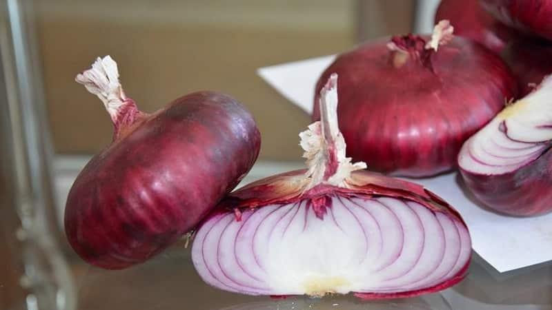 Особенности выращивания и полезные свойства красного лука