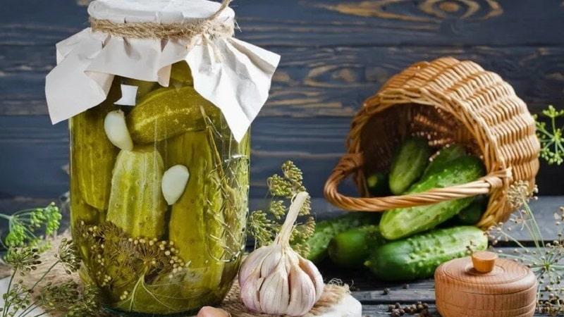 Самые вкусные рецепты хрустящих консервированных огурцов от опытных домохозяек