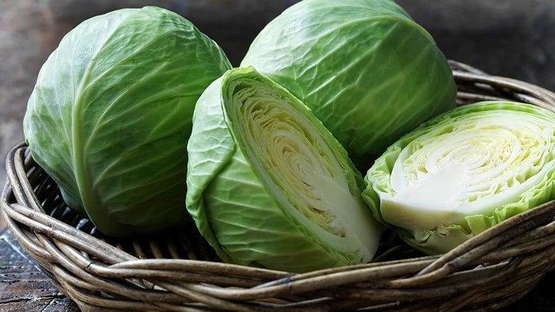 Сколько калорий содержится в свежей капусте