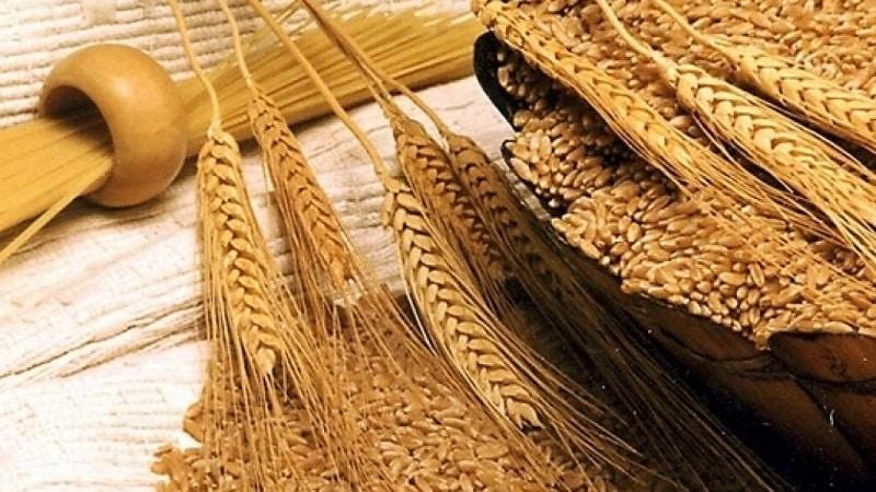 В чем особенности муки из твердых сортов пшеницы, как её выбирать и применять
