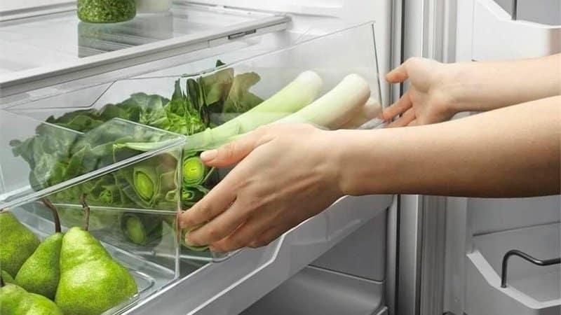 Как правильно заморозить лук-порей на зиму и можно ли это сделать в домашних условиях
