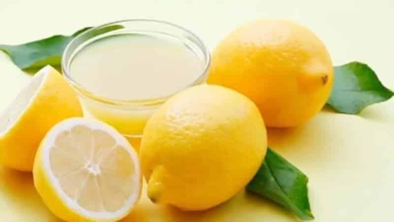 Лучшие способы, как хранить лимоны в домашних условиях
