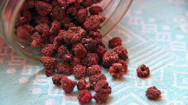 Как высушить ягоды и листья малины в домашних условиях