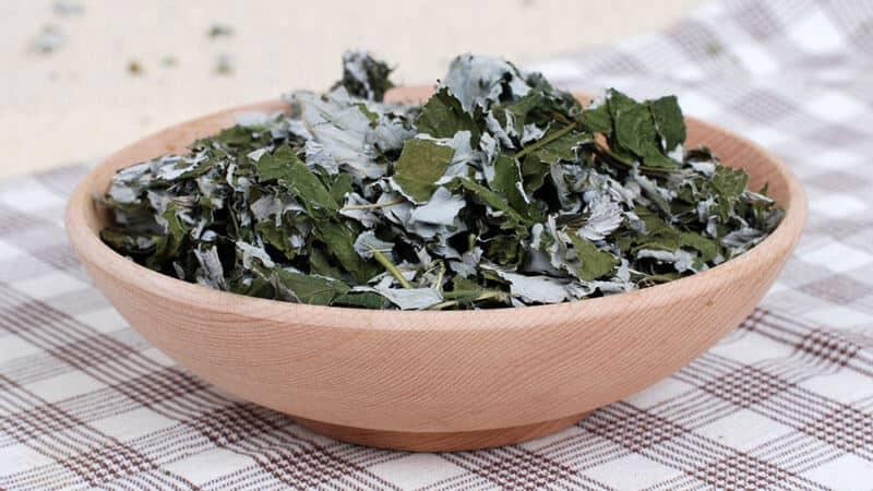 Отвар из листьев малины - полезный чай