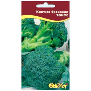 """Особенности выращивания и описание сорта капусты брокколи """"Тонус"""""""
