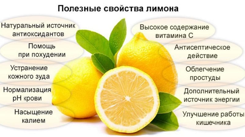 Кому показан и чем полезен лимон для организма женщины