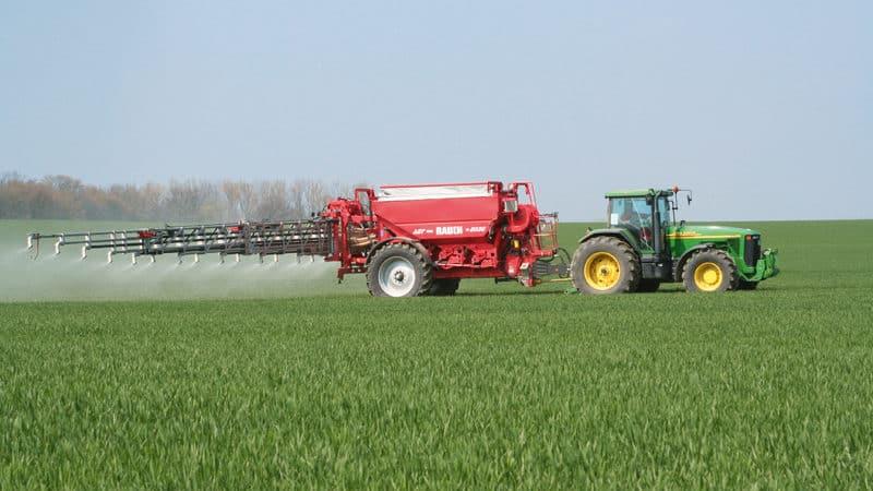 Подкормка озимой пшеницы: методы и нормы внесения удобрений