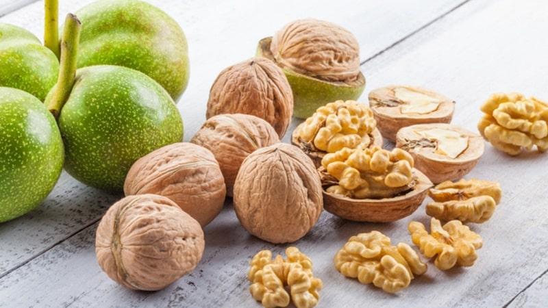 Чем полезен грецкий орех для женщин?