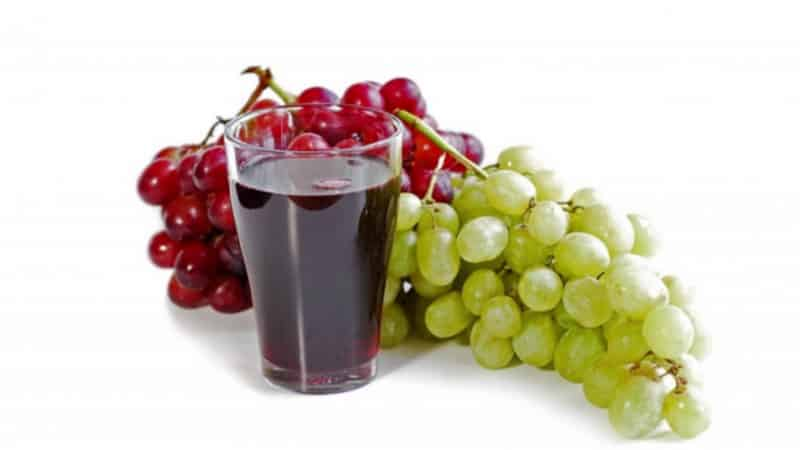 Лучшие морозостойкие сорта винограда: характеристики, описание, критерии выбора