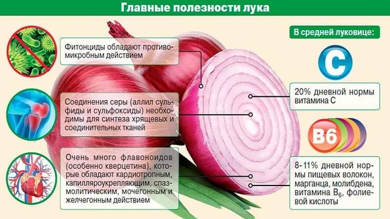 Невероятная польза лука для организма мужчин
