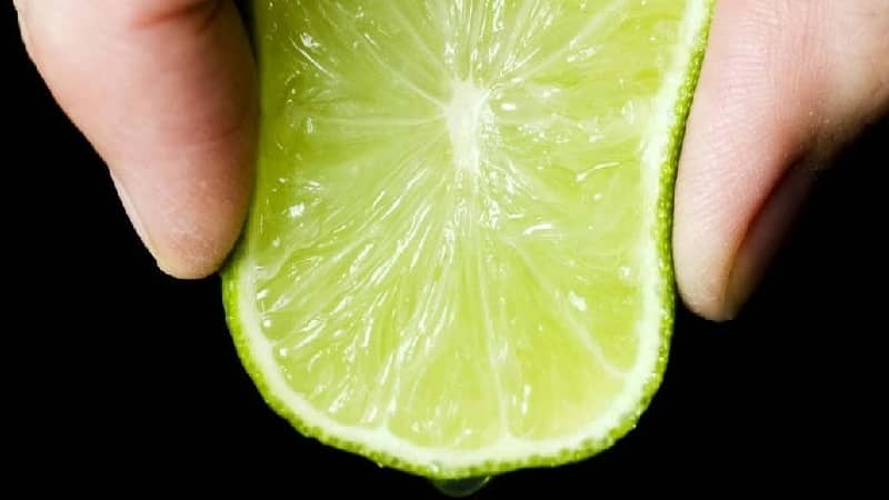 Сок и концентрат лайма: состав, свойства, применение, противопоказания