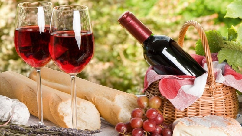 Гибрид красного винограда Пинотаж