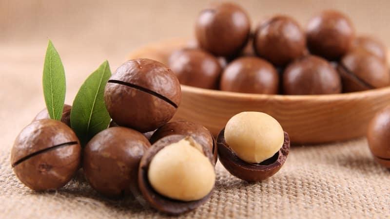 Какой на вкус и чем пахнет орех макадамия, как его правильно есть