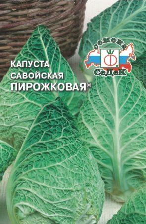 Описание, выращивание, популярные сорта савойской капусты