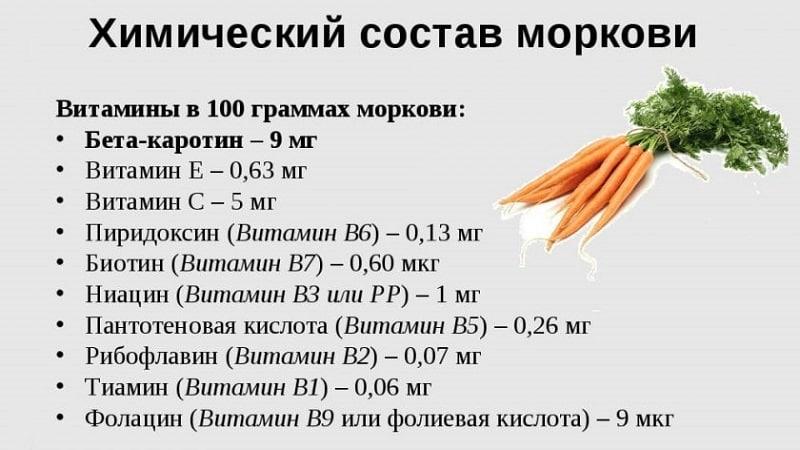 Морковь - какое это растение, сколько весит, из чего состоит — все о моркови