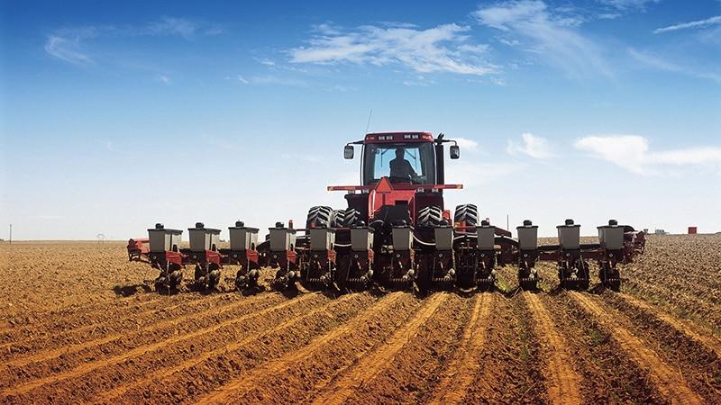 Какова норма высева картофеля на 1 га в тоннах и как её правильно рассчитать