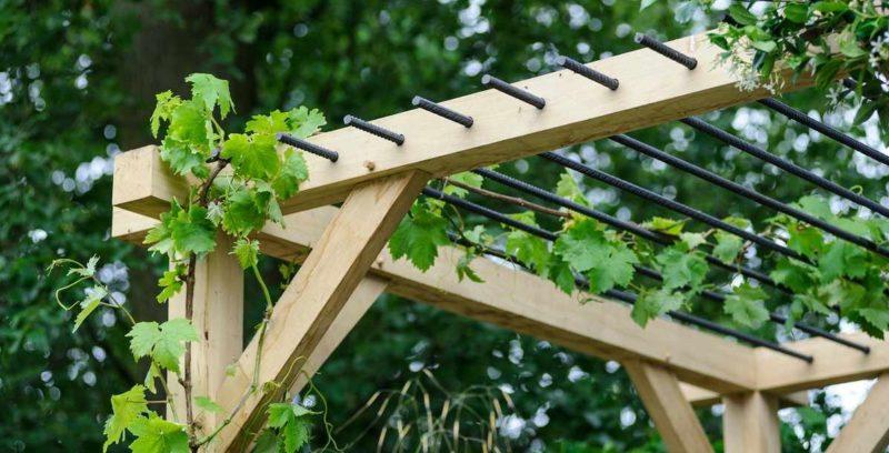 Как сделать перголу для винограда своими руками