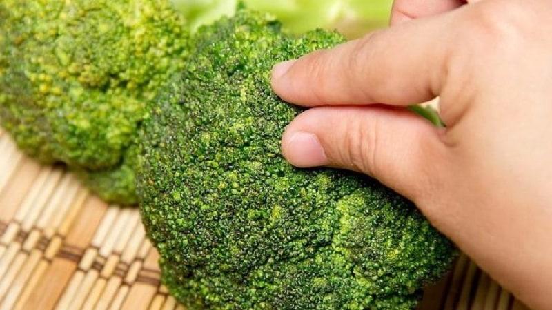 Как есть брокколи и можно ли есть ее в сыром виде
