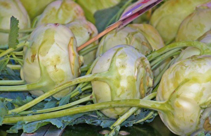 Когда собирать урожай капусты кольраби и грядки