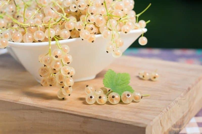 Полезные свойства и противопоказания белой смородины для женщин