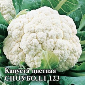 Описание и фото лучших сортов цветной капусты