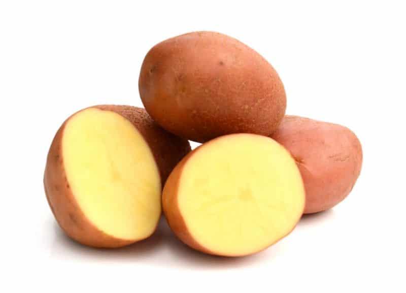 картофель ароза описание сорта фото отзывы