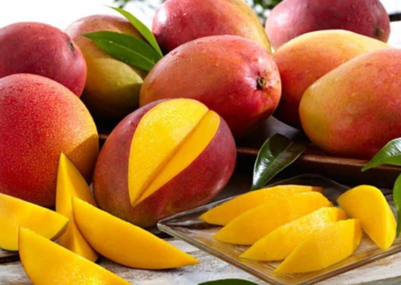 как выглядит манго